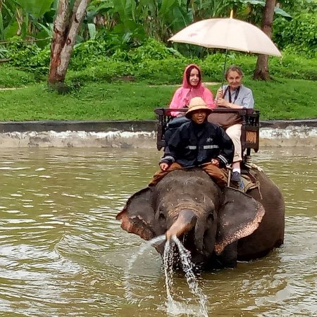 Lodtunduh, Indonesia: Elephant ride