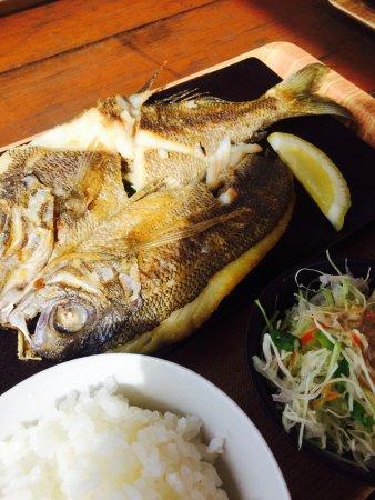 沖縄のお魚こんなにおいしいの!