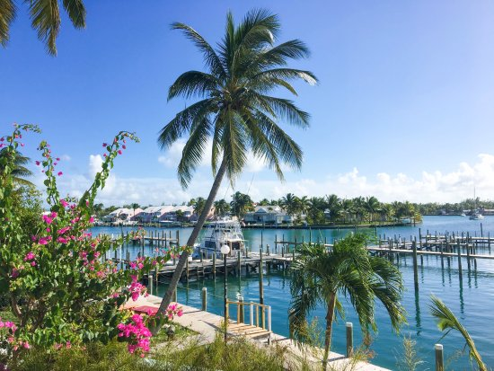 Treasure Cay Beach, Marina & Golf Resort: View from the waterfront suite