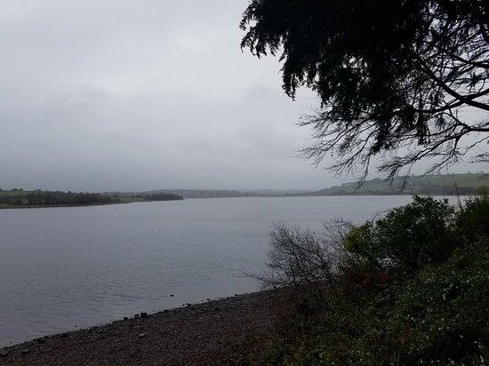 Мэкрум, Ирландия: 20171121_053354_large.jpg