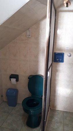 Hotel La Torre: Baño, una escalera encima del inodoro y la pequeña ducha