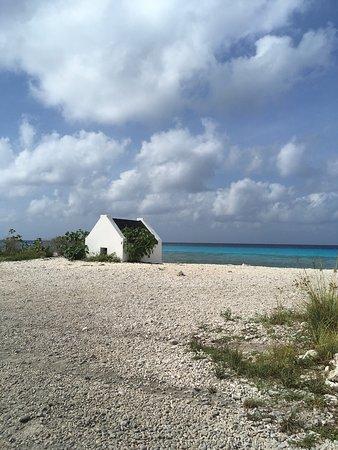 Kralendijk, Bonaire: photo8.jpg