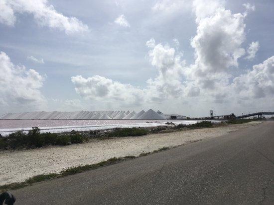 Kralendijk, Bonaire: photo9.jpg