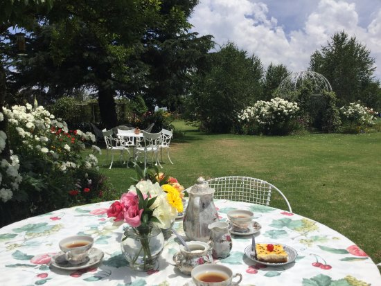 Van Reenen, South Africa: Stop and smell the roses in the tea garden