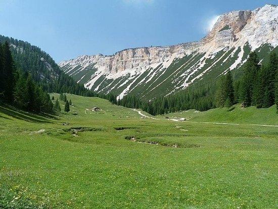 Cortina d'Ampezzo, Italia: Le sorgenti a Campo Croce