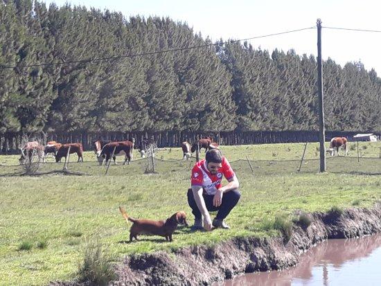 General Mansilla, Argentyna: La laguna, una hermosura!