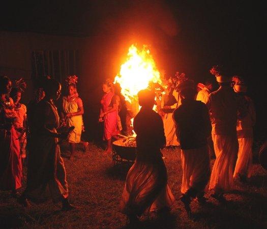 Asteya Kanha: Baiga Dance
