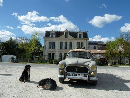 Mortagne-sur-Gironde, France: Domaine du Meunier The Millers House