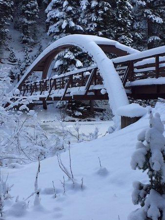 Manning Park, Canada: Rainbow bridge