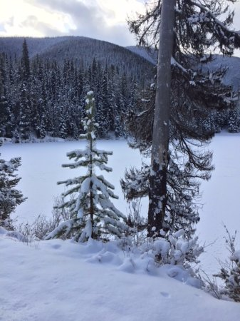 Manning Park, Canada: Lightening lake