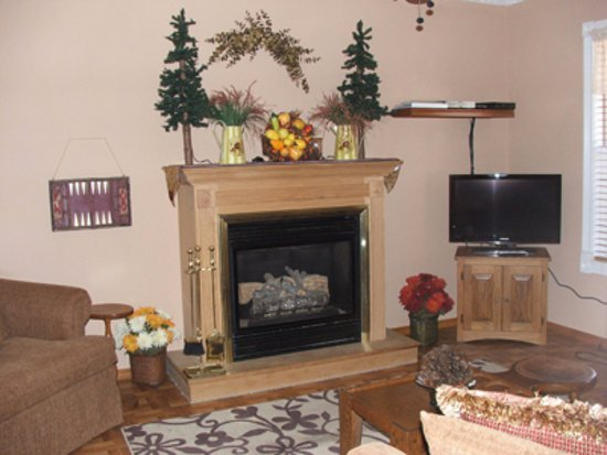 Spencer, Τενεσί: Gas fireplace at the Davidson House