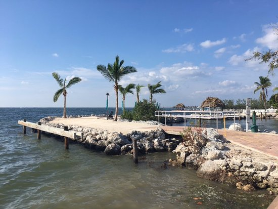 Keys Palms Rv Resort Key Largo Florida Campground