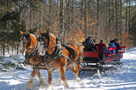 Madison, Nueva Hampshire: Sleigh Rides are offered seasonally at Purity Spring Resort