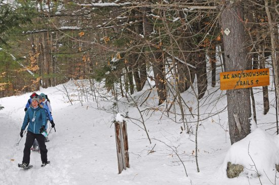 Madison, Nueva Hampshire: Snowshoeing at the Purity Spring Resort XC & Snowshoe Reserve