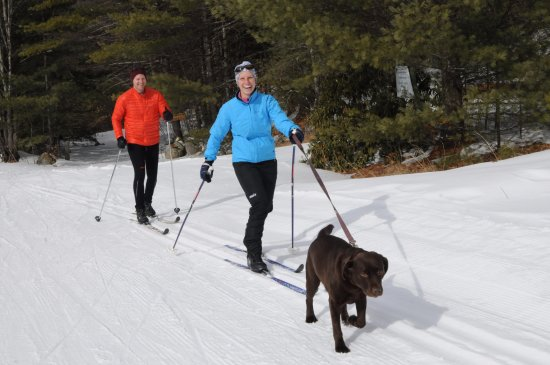 Madison, Nueva Hampshire: A couple and their dog enjoying the Purity Spring Resort XC & Snowshoe Reserve