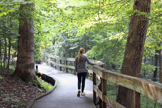 The Lodge at Mammoth Cave: Trails