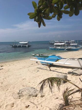 Foto de Ocean Vida Beach & Dive Resort