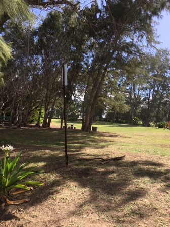 Waihee Beach Park: Picnic area on large lawn