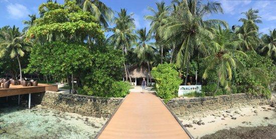Fihalhohi Island Resort : photo0.jpg