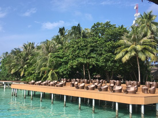 Fihalhohi Island Resort : photo1.jpg