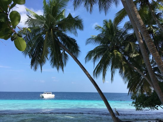 Fihalhohi Island Resort : photo2.jpg