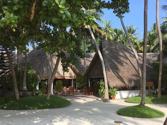 Fihalhohi Island Resort : photo3.jpg