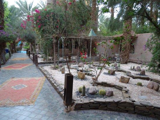 Desert Dream 4x4 Tours: Zagora, 1. Übernachtung, Anlage, Pool und Zimmer ein Traum