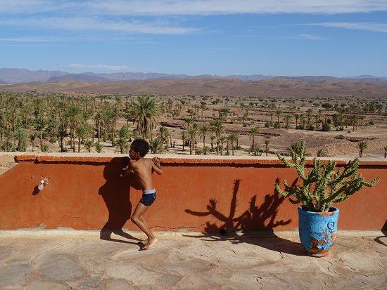 Desert Dream 4x4 Tours: Auch so kann eine Fahrpause aussehen: Palmen, Tee trinken und Pool