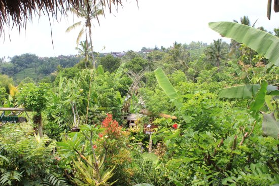 Hidden Garden Agriculture