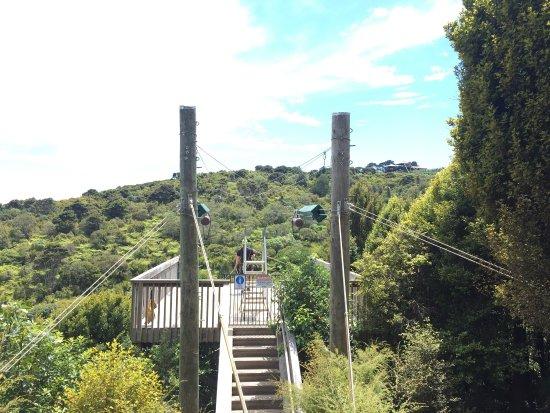 Onetangi, Νέα Ζηλανδία: photo1.jpg