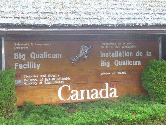 Κουαλίκουμ Μπιτς, Καναδάς: what to look for.