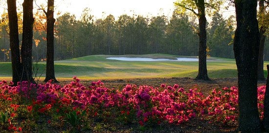 Orange Park, FL: You wouldn't want to hit a shot from here, but the view is worth it!