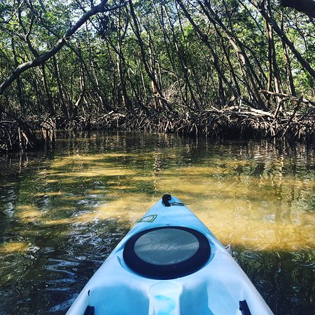 Kayaking SRQ Tours and Rentals