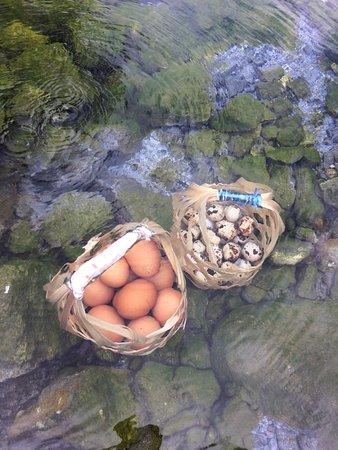Image result for san kamphaeng egg baskets in pool