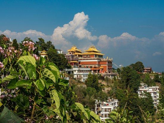 Thrangu Tashi Monastery