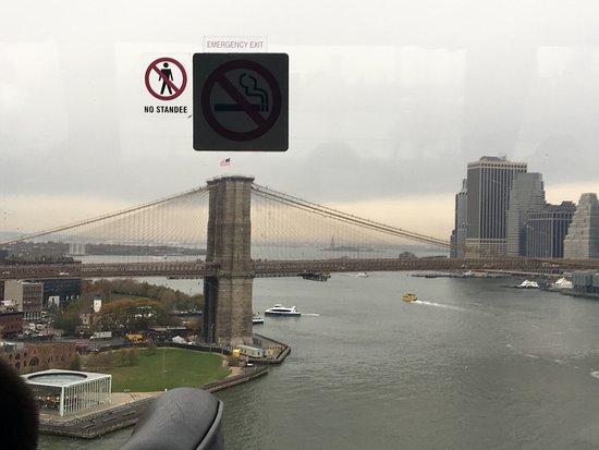 A Slice of Brooklyn Bus Tours : photo5.jpg