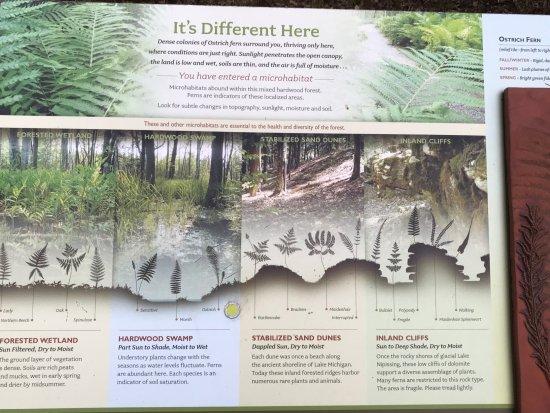 Ellison Bay, WI: a sign of the Fern trail
