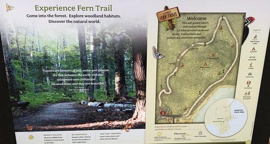 Ellison Bay, WI: Sign near the beginning of the fern trail