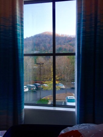 Homewood Suites by Hilton Asheville- Tunnel Road : photo1.jpg