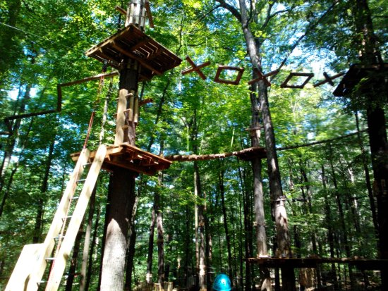 Mallorytown, Kanada: Tall tree adventure we did not get too. Next year's adventure