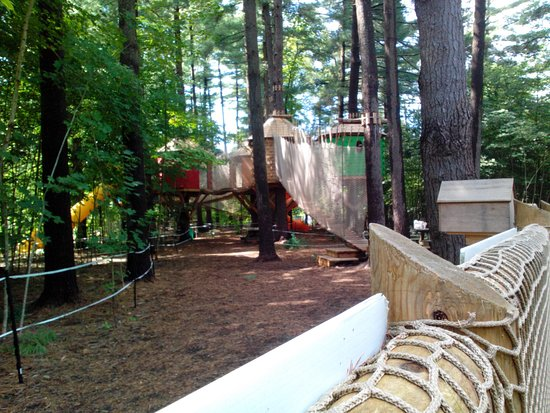Mallorytown, Canada: A great tree house playground and mini zipline for young childrenand adults after ziplining for