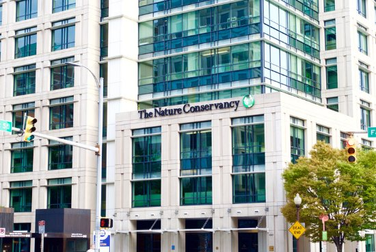 Holiday Inn Arlington At Ballston: The Nature Conservancy is just up the street