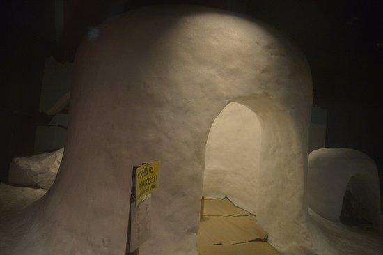 Yokote, Japan: 「かまくら」が保存されている。5人までは入れる。