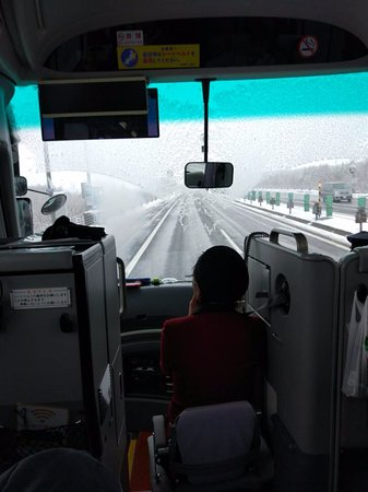 写真北海道中央バス 定期観光枚
