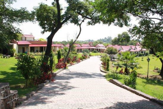 Jungle Barracks