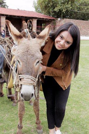 Mision La Muralla: Despues de participar en una carrera de burros