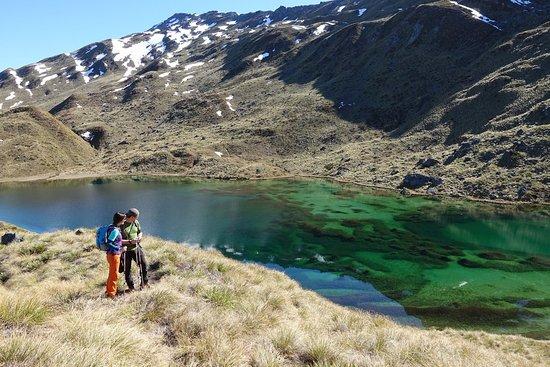Eco Wanaka Adventures : Heli hike in Mt Aspiring