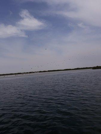 Mbour, Сенегал: dans les îles du saloum