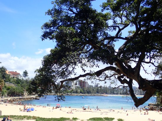 Manly, Australia: Shelly Beach