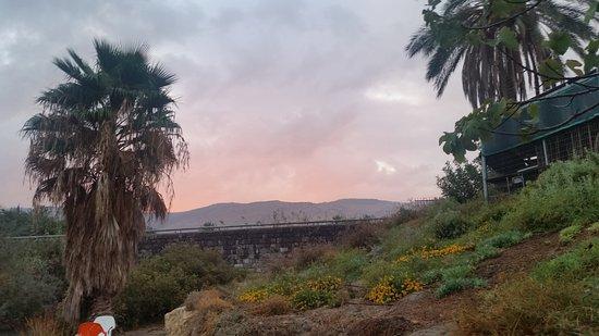 תמונה מאירוח כפרי ניר דוד